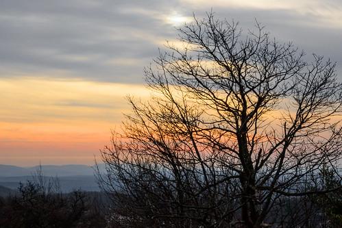 smack53 highpointstatepark newjersey sunset evening eveningsky paintedsky tree silhouettes clouds cloudy cloudysky njstatepark nikon z50 nikonz50 nikkor 1650mm winter wintertime winterseason