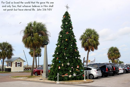 fernandina fernandinabeach christmas christmastree christmasdecoration tree palmtrees palmtree palms ameliaisland amelia ameliariver intracoastalwaterway river riverfront waterfront town village nassau nassaucounty florida fl fla northflorida northeastflorida landscape horizon marina centrestreet historicdistrict downtown island islandlife holiday travel unitedstates america us usa jesus christ god lord bible scripture verse christianity christian