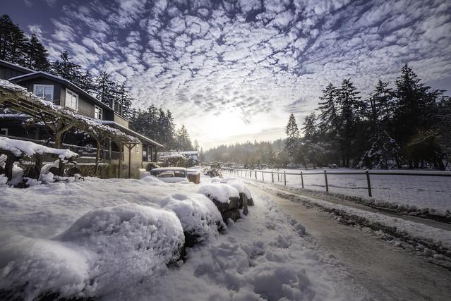 Nort Sanich. Vancouver Island. Canada