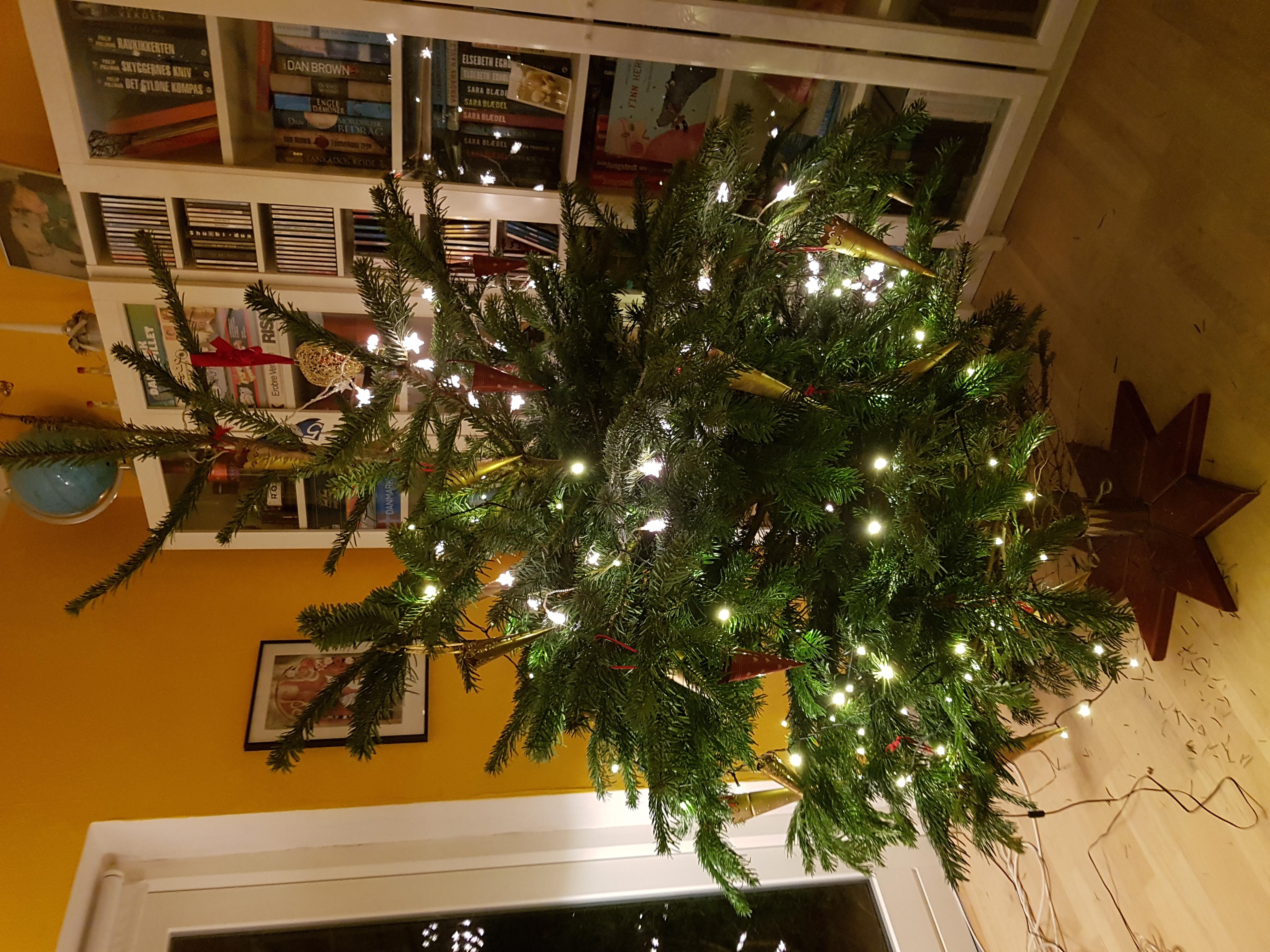 juletræ 2020-12-24 21.22.02