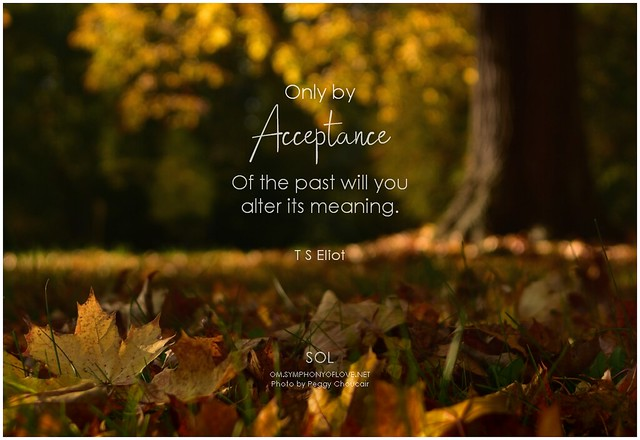 T S Eliot Only by acceptance of the past will you alter its meaning