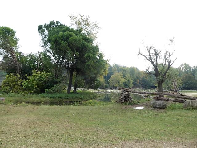 Parco Natura Viva