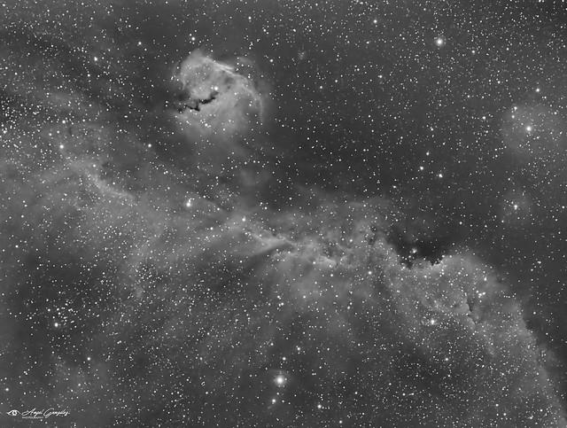IC-2177-Nebulosa de la Gaviota