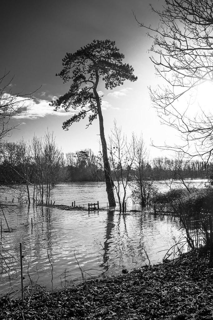 Wet Wallingford
