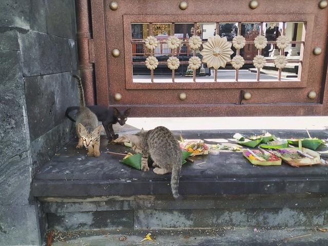 Gods in Bali