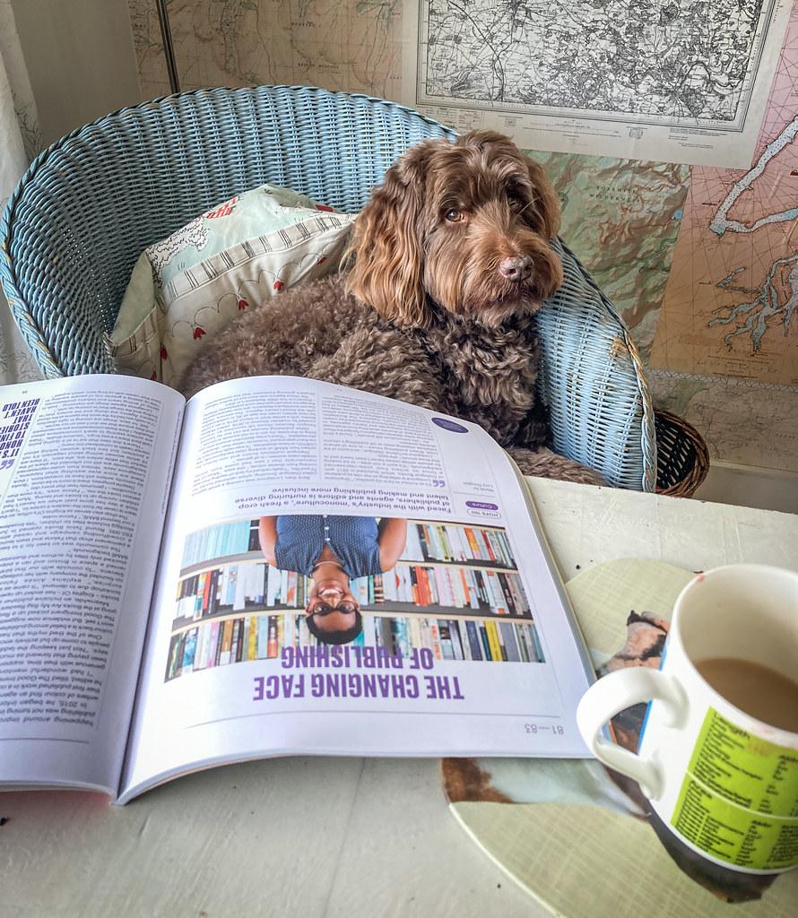 Ewok reads Positive News