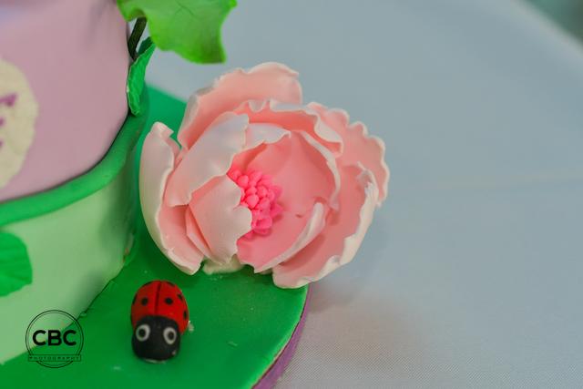 cake_50953