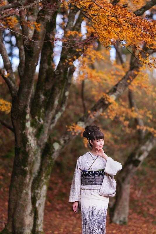 Autumn colors, portrait of beautiful lady.