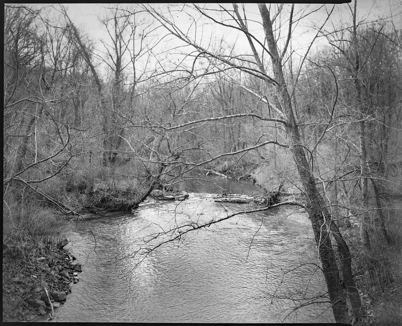 winter landscape, through the trees, late light, tributary, French Broad River, Asheville, NC, Graflex Crown Graphic, Schneider Symmar 150mm, f-5.6, Fomapan 400, HC-110 developer, 12.23.20