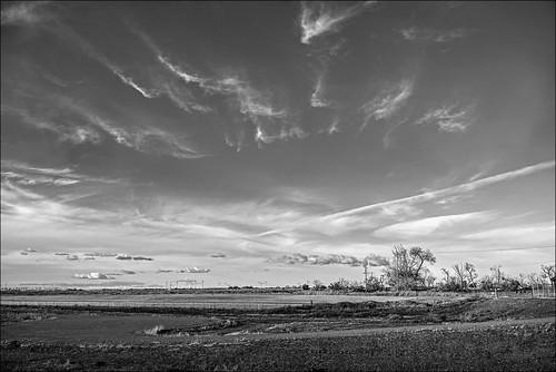 landscape blackandwhite oakley ca california nikoncameras nikond750 clouds field