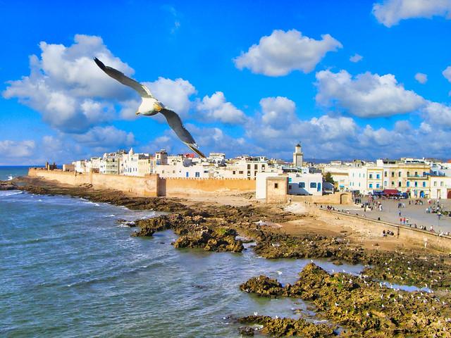 🇲🇦 la sqala du port, Essaouira (Maroc)