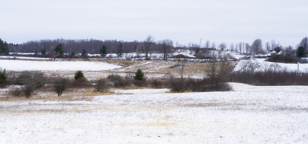 North Country Winter Farmscape