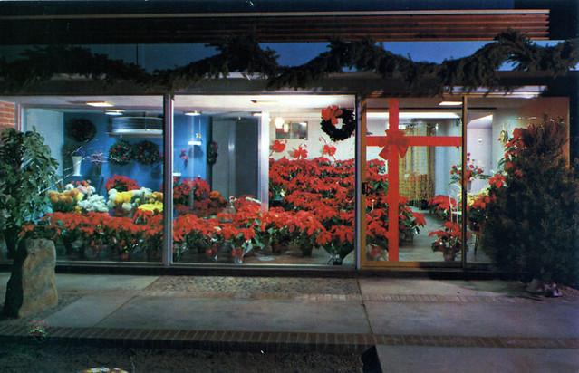 Harlow Nursery & Flower Shop Tucson AZ