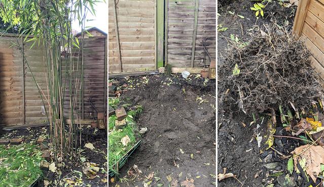 For Gardening Blog