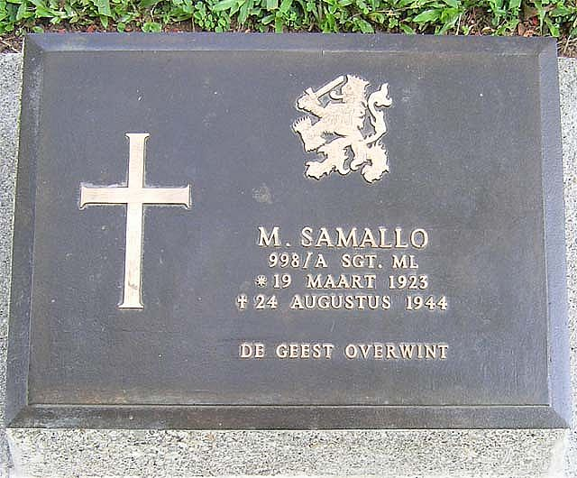AMB-01 samallom2007
