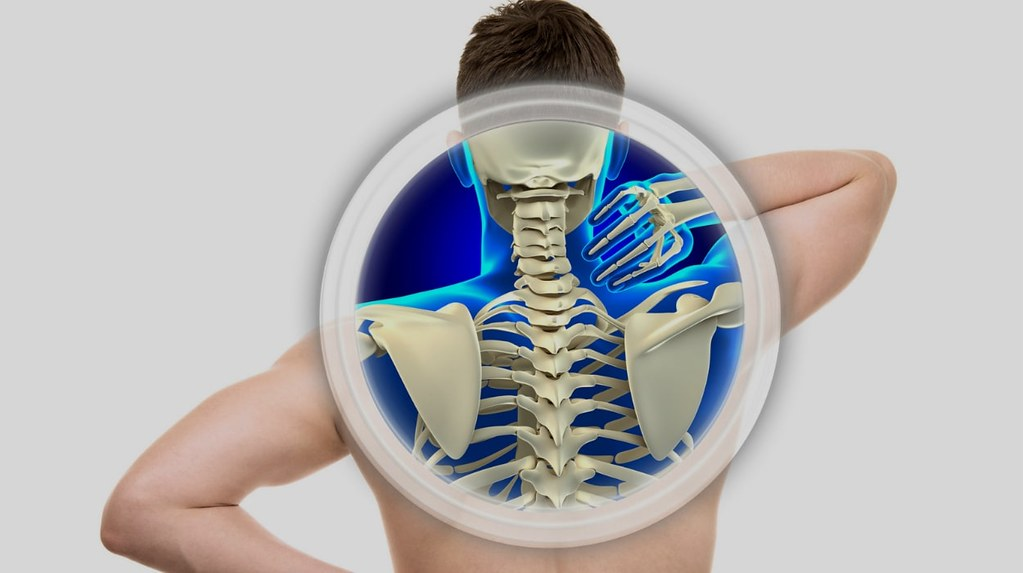 Chiropractors Help Posture