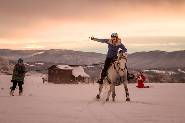 20201219 Skijoring by Harris_187