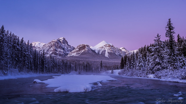 Frosty morning in Canadian Rockies.