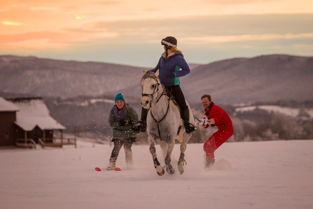 20201219 Skijoring by Harris_213