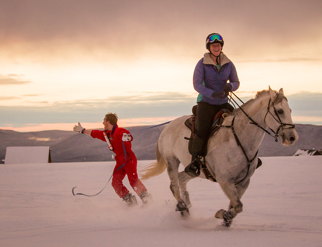 20201219 Skijoring by Harris_226