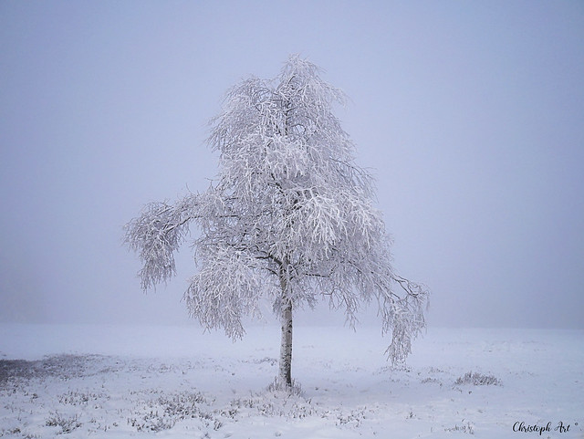 feel the cold deeply....