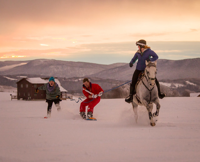 20201219 Skijoring by Harris_218
