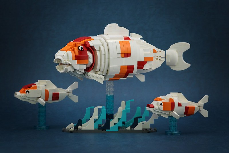 nEO_IMG_DOGOD_Koi Fish_05