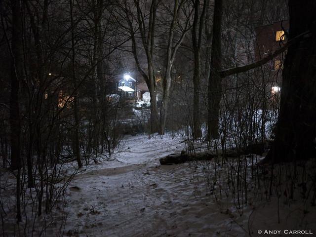 Path, night