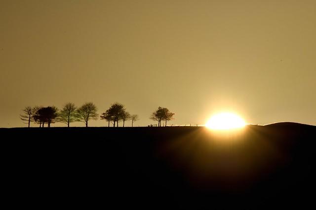 1_Frances_Valdes_Setting_Sun