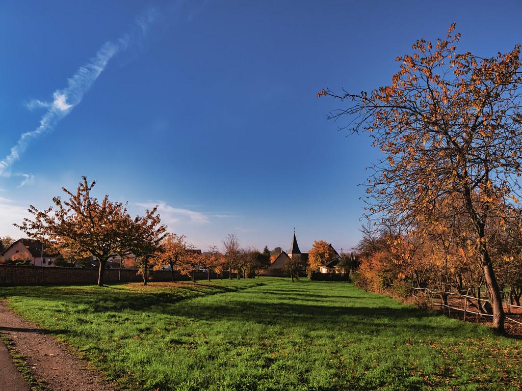 Un clair matin de fin d'automne... 50771494937_7815057d53_b