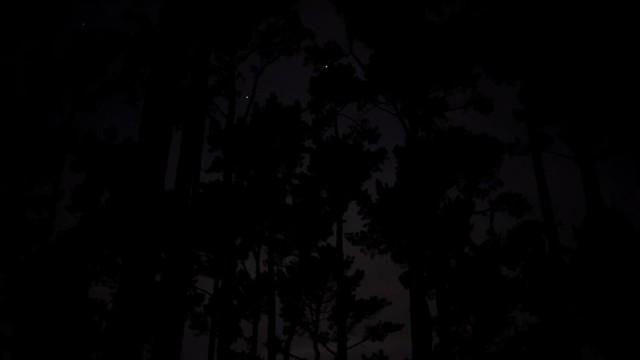Screen Shot 2020-12-28 at 10.22.56 AM