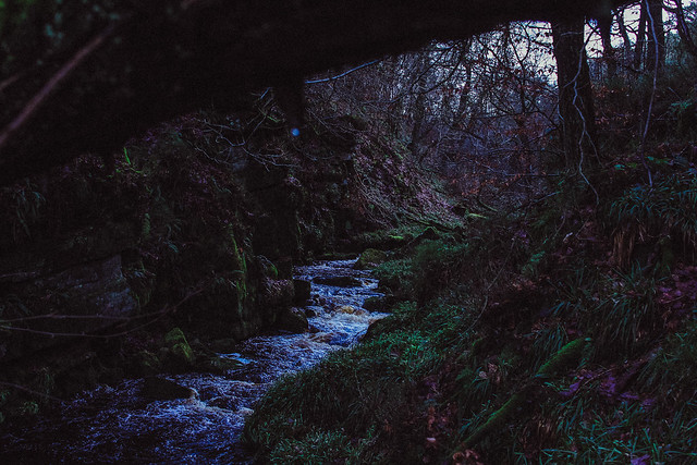 The Twisty Brook
