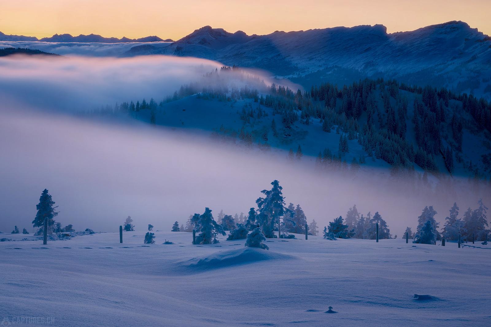 Fog wave - Zentralschweiz