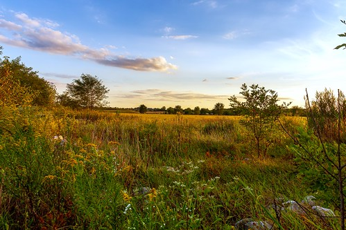 5dmarkiii shiloh hdr illinois landscape