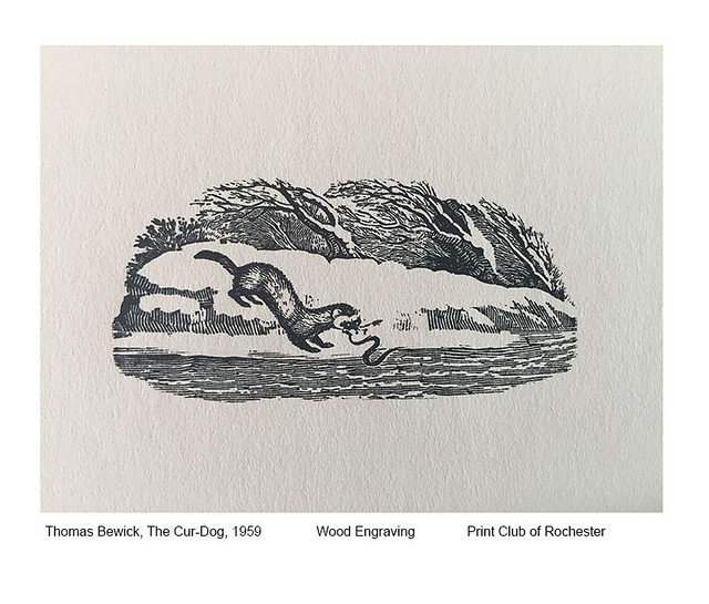 Celebrating 90 Years: Print Club of Rochester 1930-2020