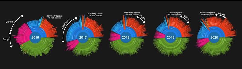2020 year end comparison