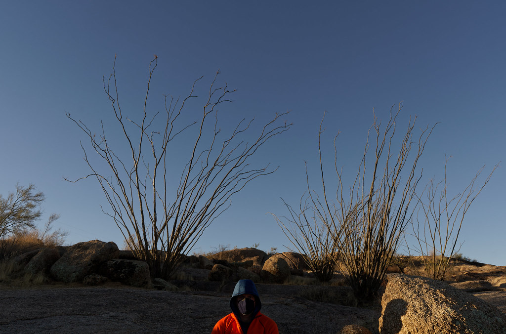A self-portrait wearing a bright orange jacket while sitting in front of a copse of ocotillos on an off-map trail in the Pima Dynamite section of McDowell Sonoran Preserve in Scottsdale, Arizona on December 26, 2020. Original: _CAM8203.arw