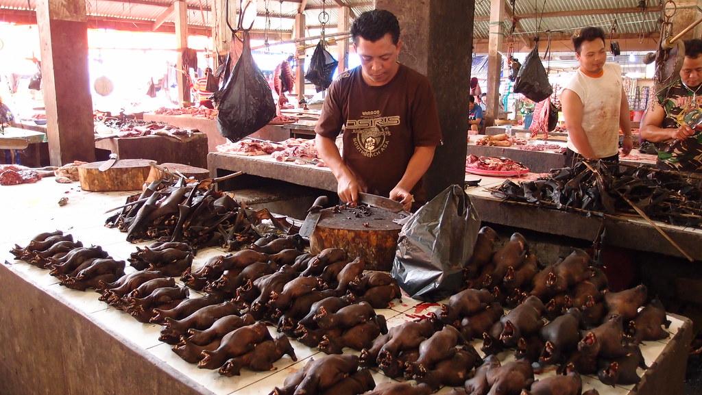 Indonesia Sulawesi