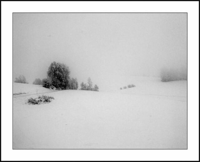 Bayerischer Wald - Neuschnee in Anglberg