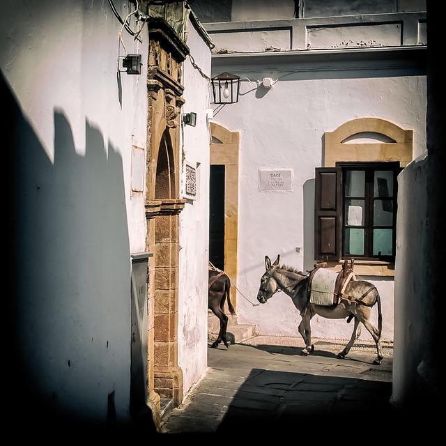 L'âne de Lindos