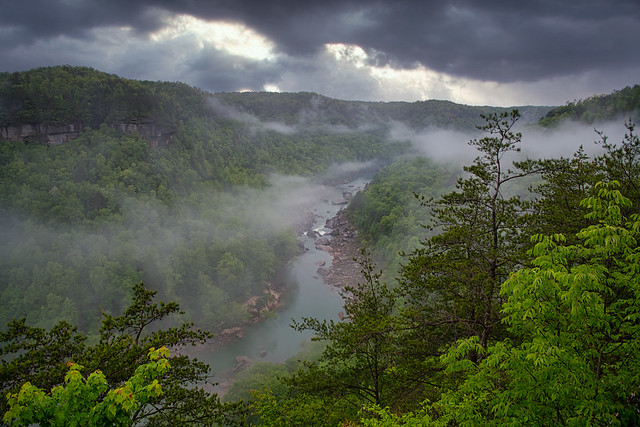 Amidst the mist and gorge