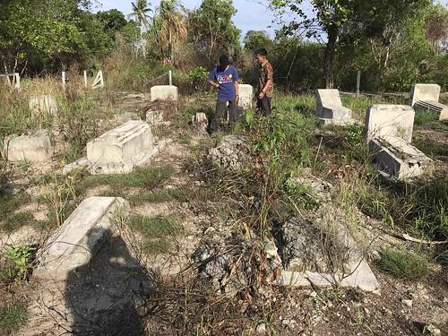 groep van 29 graven, waarschijnlijk van geallieerde militairen. Opschriften zijn niet meer te lezen.