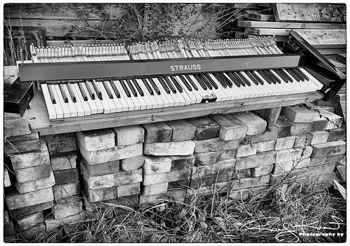 raddad6735212 raddad randyknauf raddad4114 randy knauf music keyboard covid19 lifeduetocovid19 sad straus strauss