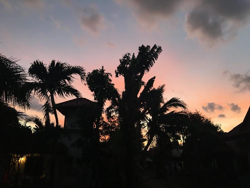 サムイ島から日々雑感 2020年ラスト