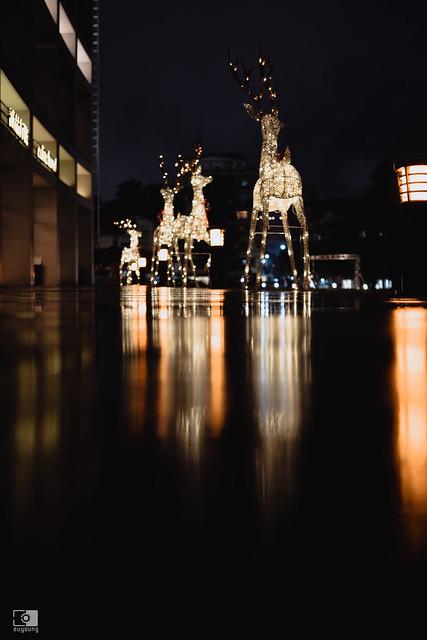 散步攝影:雨夜,35mm | 11