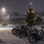 Snickargården, Uppsala, December 25, 2020
