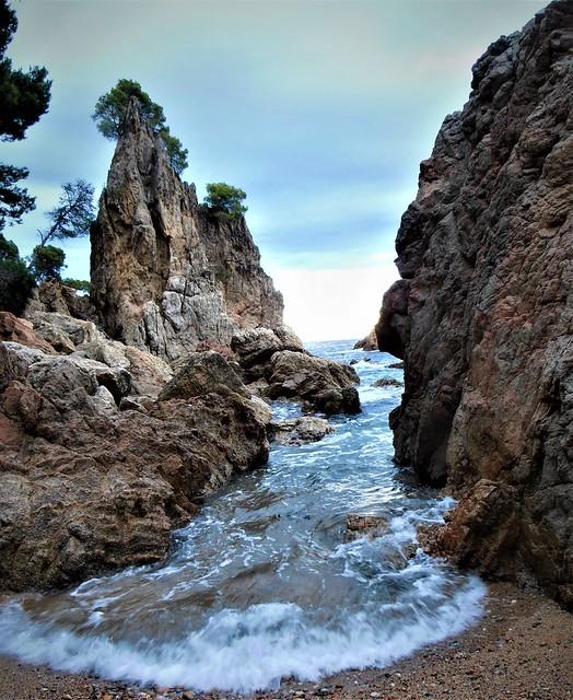 Cap Roig camí de ronda  (Platja del Golfet) Calella de Palafrugell