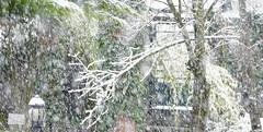 Campan (Hautes-Pyrénées, Occitanie, Fr) – Fin d'année sous l'orage