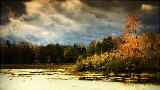 An einem Herbsttag