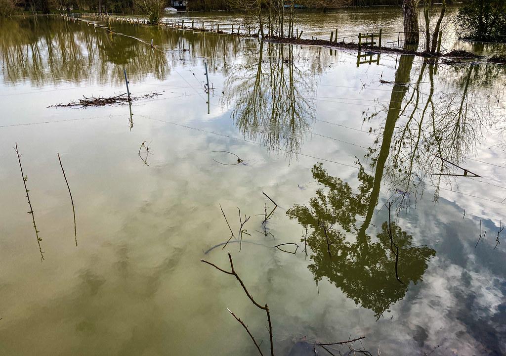Thames Reflecting
